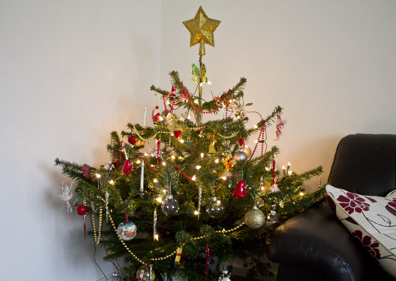 Christmas Tree at Home
