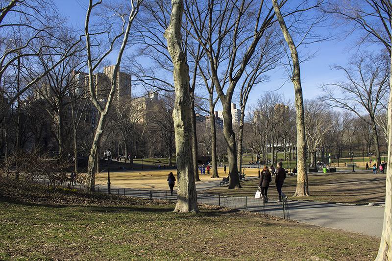 Central Park New York